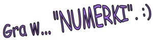 gra-w-numerki-j-rejner-2009-2010